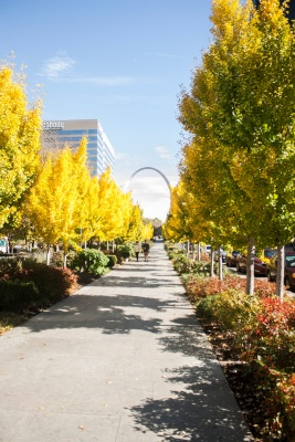 City_Garden_Sidewalk_3_Web