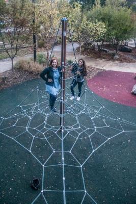 Spider_Web_Constance_Alex_Web