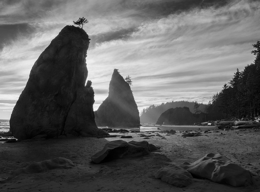 (Rialto Beach, Olympic National Park, Washington)