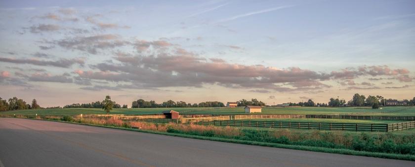 Kentucky_Horse_Park_1_Web