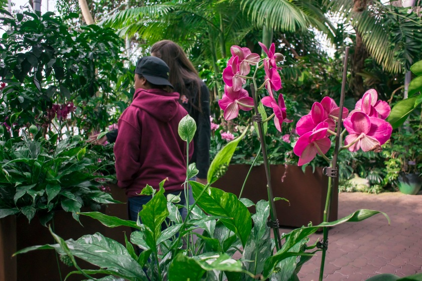 botanical_garden_ashley_kaitlyn_web