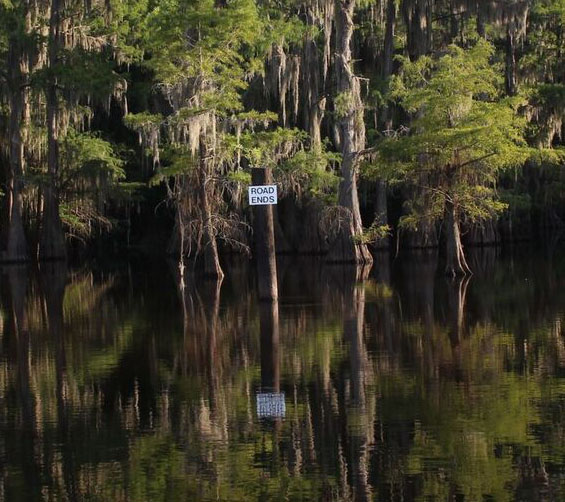 Caddo Lake, Mark Burns, SHSU, LEAP Center, Photography, Documentary, Caddo Lake