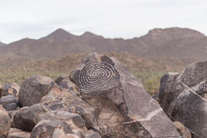 SHSU, LEAP Center, Saguaro National Park, Arizona, Tucson, Mark Burns, Indian Petroglyphs