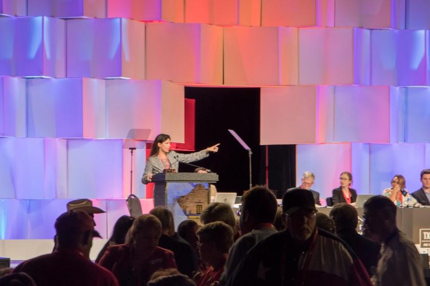TX GOP, Texas Republican Convention 2018, VIce Chair Amy Clark