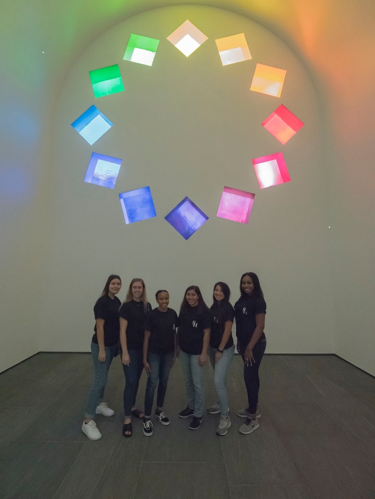 SHSU, LEAP Center, Center for Law Engagement And Politics, LEAP Ambassadors, Blanton Museum of Art, Austin Texas, ATX, Ellsworth Kelly