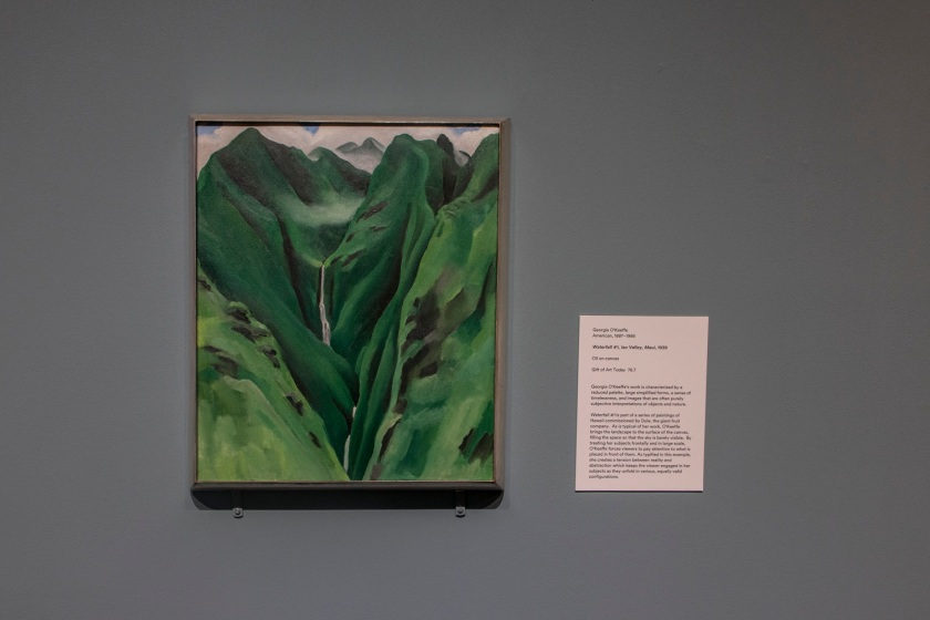SHSU, LEAP Center, LEAP Ambassadors, Memphis, Brooks Museum of Art, Georgia O'Keeffe