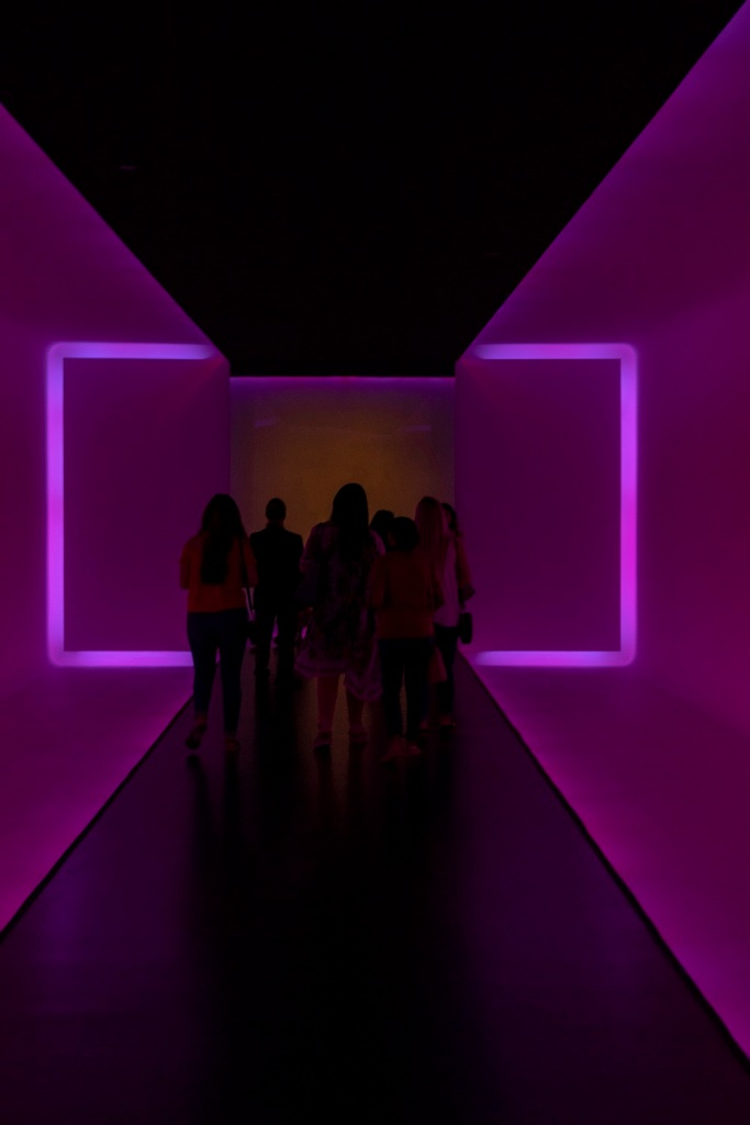 SHSU, LEAP Center, LEAP Ambassadors, MFAH, Museum of Fine Arts, Houston TX, James Turrell