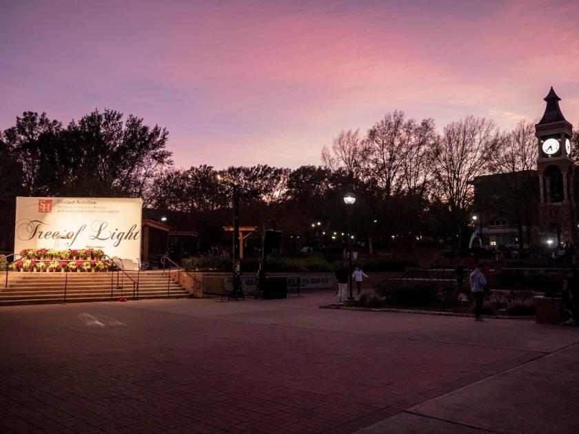 SHSU, LEAP Center, LEAP Ambassadors, Center for Law Engagement and Politics, Tree of Lights