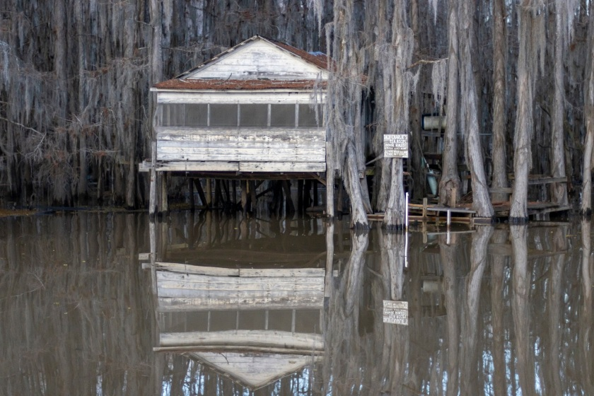 SHSU, LEAP Center, Center for Law Engagement and Politics, Caddo Lake, Dick and Charlie's Tea House
